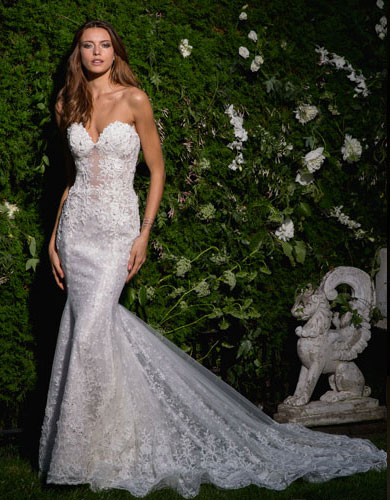 Bridals Gown Couture Collection | Eve of Milady